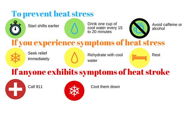 Beat the heat: Avoiding heat stress